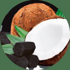 Icones carvão de coco zomo, imagem de um coco com carvões